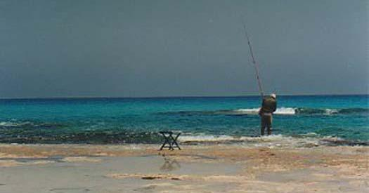 Fisherman at Marsa Matruh